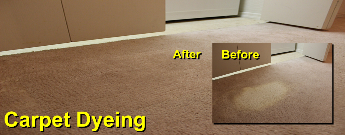 carpet dyeing banner